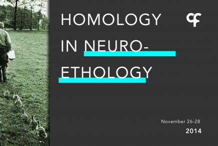Homology in NeuroEthology