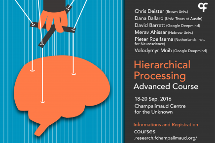 Hierarchical Processing Advanced Course