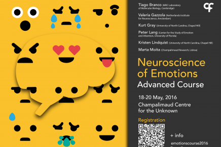 Neuroscience of Emotions Advanced Course